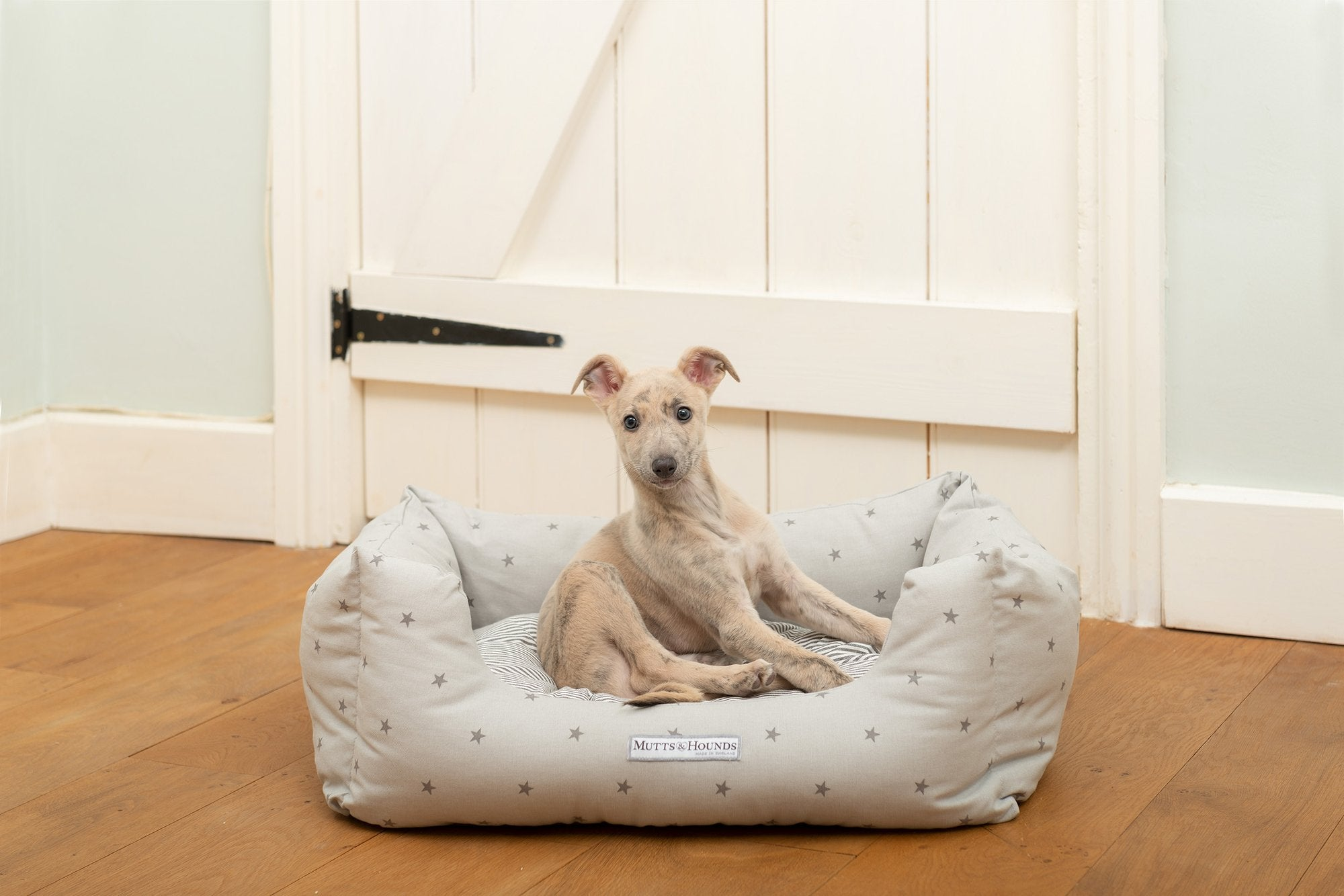 Jolly Good Dog Beds