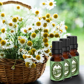Tea Tree Essential Oil, Skin Care, Foot Odor, Pest Repellent & Natural Fragrance