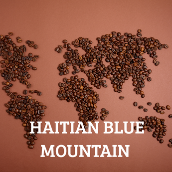 Haitian Blue Mountain Organic Coffee