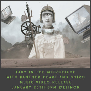 January 25 - Lady in the Microfiche Music Video Release Show