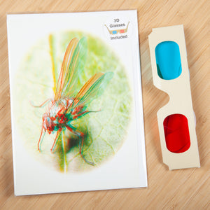 3D Greeting Card Collection