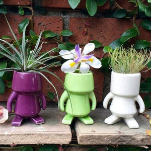Beau Bear Ceramic Bot Planter Collection