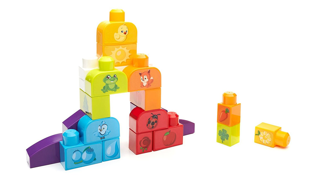 Mega Bloks Build N Learn Bags (Match My Colors)
