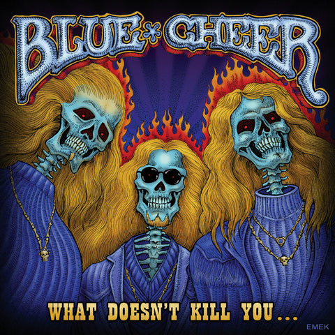 What Doesn't Kill You (CD)
