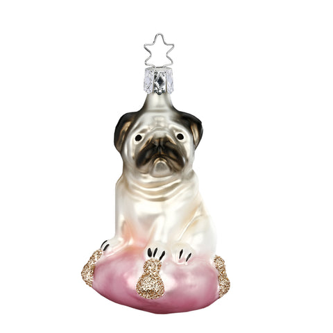 Pug Dog Princess