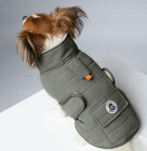 comfortable dog jacket