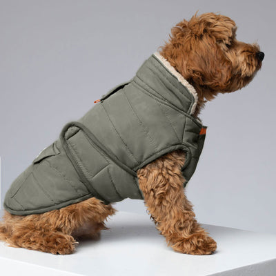 """Magic Camo"" Dog Jacket"