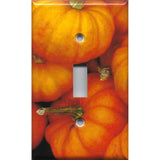 Mini Pumpkins Single Light Switch Plate Cover Fall Decor
