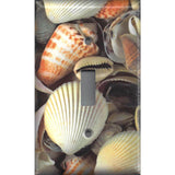 Realistic Looking Sea Shells/Seashells Beach Theme Light Switch & Outlet Covers