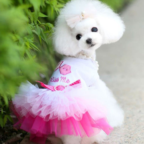 Dress - Kiss Me - 4paws