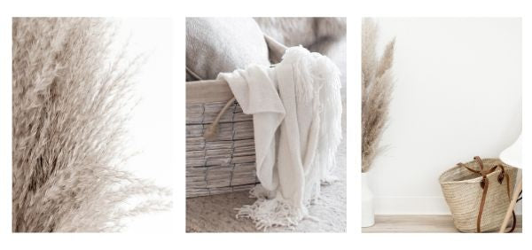 Warm blanket and pampas grass add texture to interiors