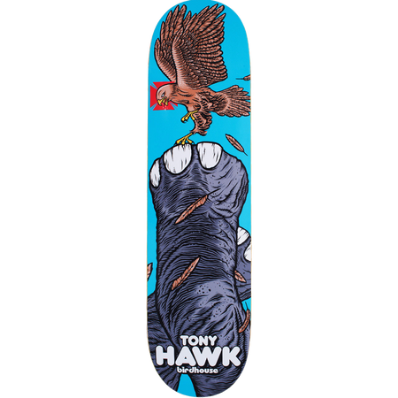 Trench Sports - Birdhouse - BP Hawk Fowl Skateboard Deck 7.87-8.12