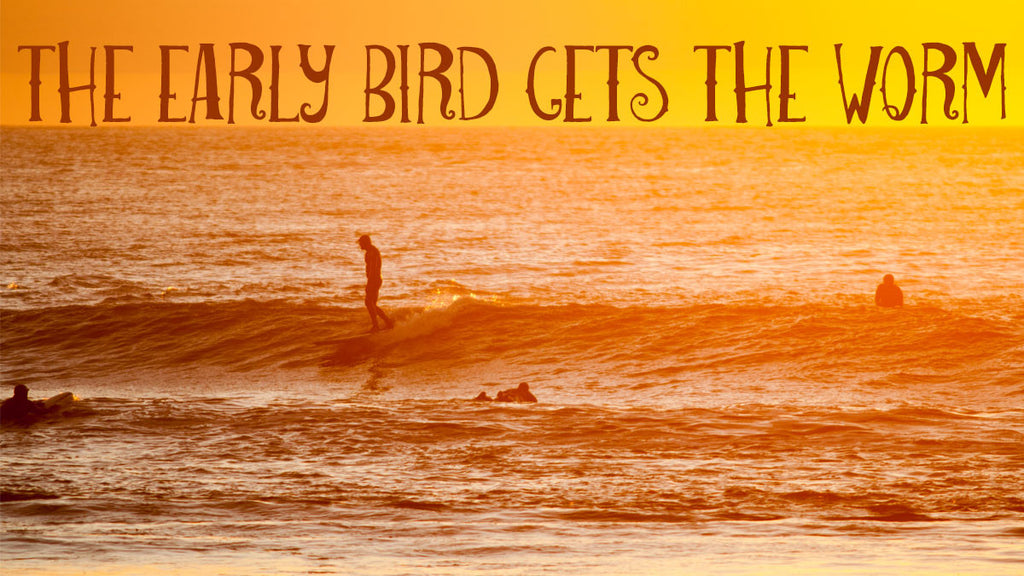 Early Bird Gets The Worm Surf & SUP Camp Specials