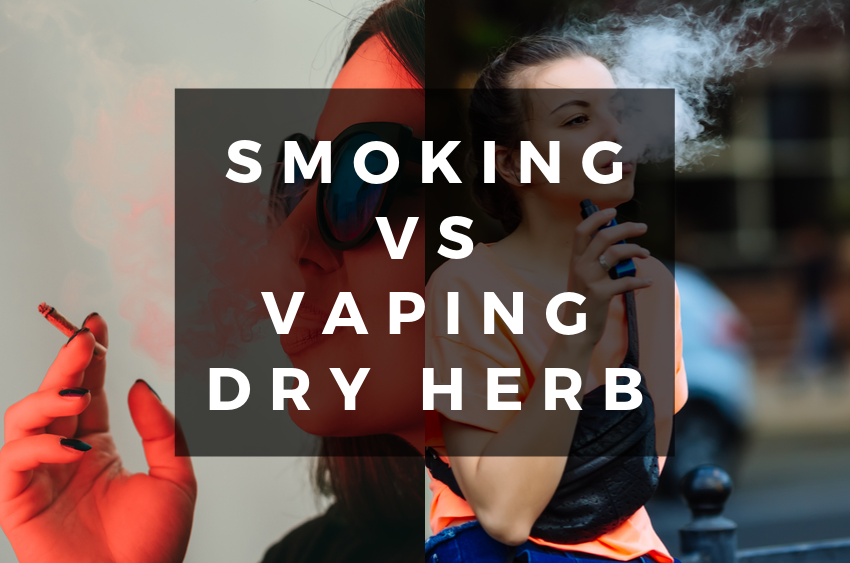 VAPING DRY HERB VS SMOKING DRY HERB
