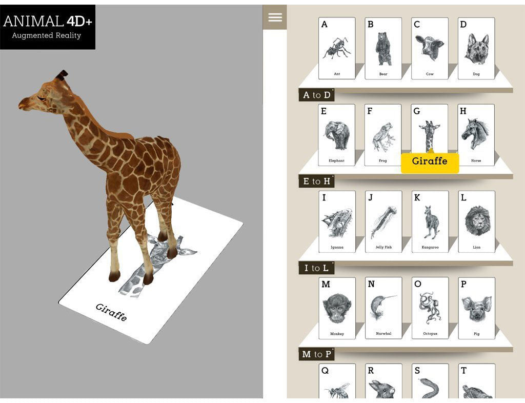 Animal 4D+ with Food Flash Cards