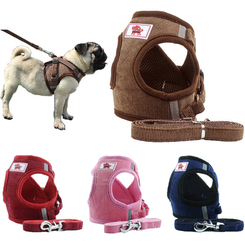 Free Shipping | Adjustable Breathable Collar Vest Harness for Dogs and Cats DubbyPet - iWynx