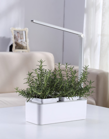 Indoor Garden Kit with Grow Light LED Growing System – iRSE