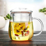 Glass Tea Infuser with Glass lid 17 oz