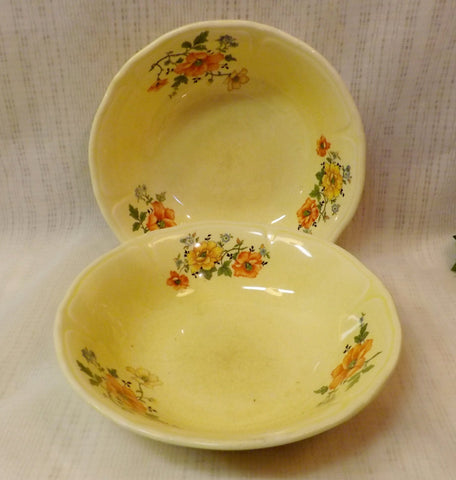 1915 Mount Clemens Antique Porcelain Ceramic Bowls 1230H Pair of 2 - The Blackwolf Shop