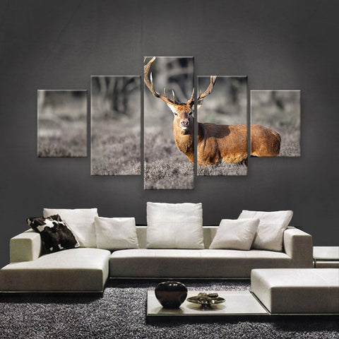 HD PRINTED LIMITED EDITION WILDLIFE CANVAS (WLC1590011)