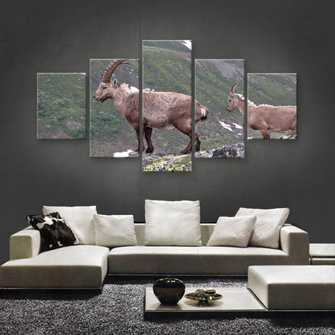 HD PRINTED LIMITED EDITION ANIMAL CANVAS (ANC159021)