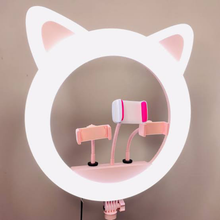 Kitty Edition - 20inch Ring Light SET