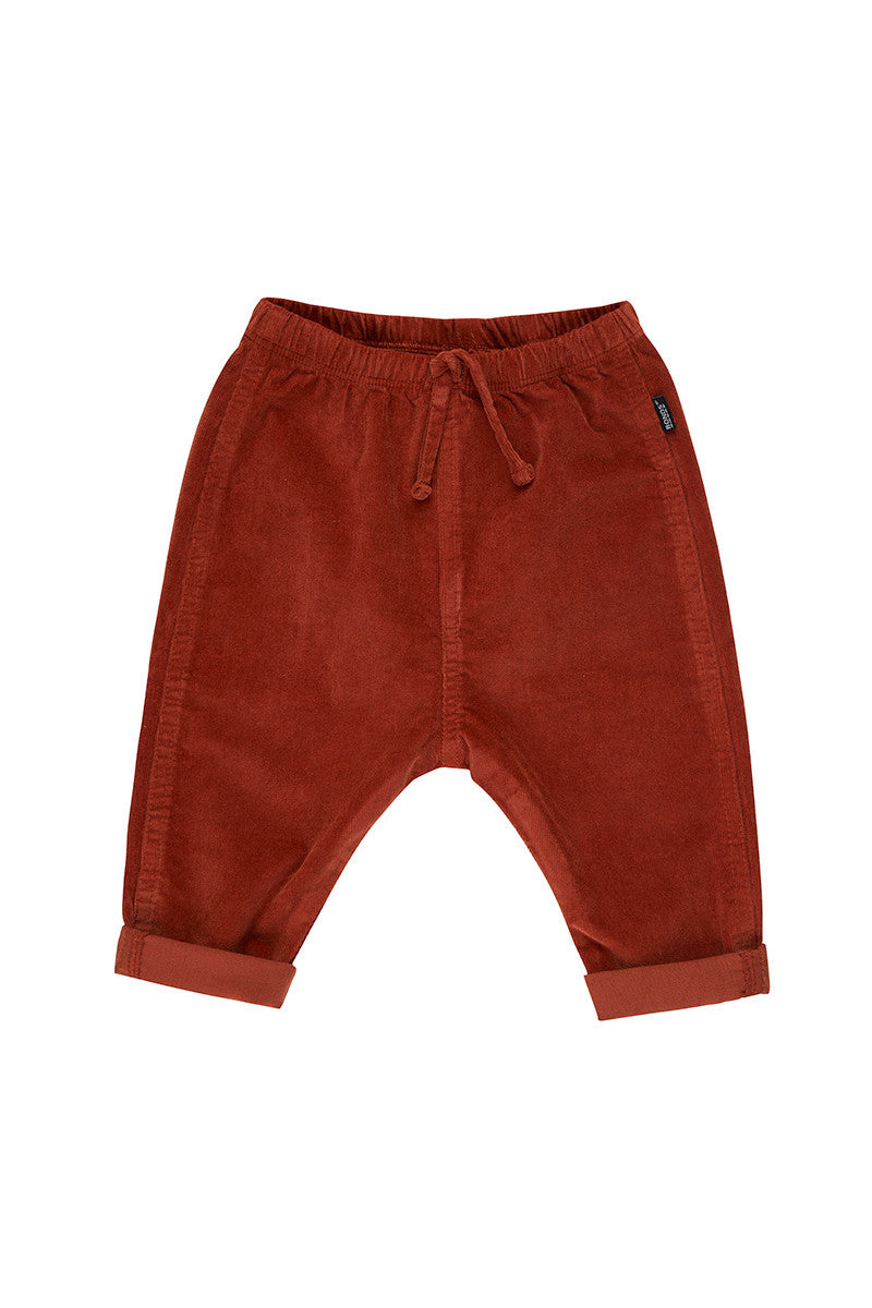 BONDS - Cord Pants | Teddy Bear