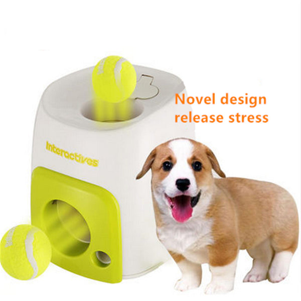 Auto Ball Launcher for Dogs