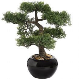 Bonsai tree in round ceramic pot - 34cm