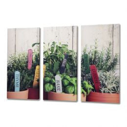 Herb 3 Way Canvas