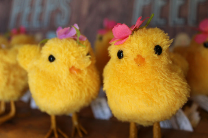 Peep Spring & Easter Ornaments & Home Decor