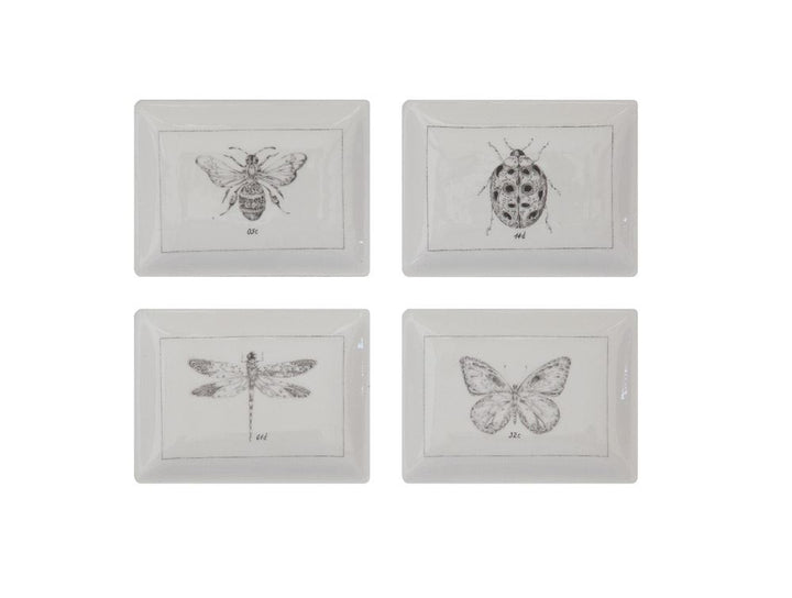 Minimal Design Insect Plates