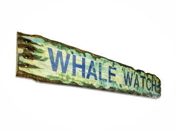 whale watch sign