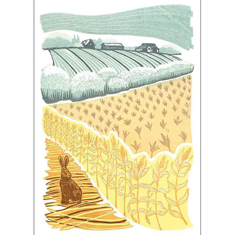 Greeting Card Green Pebble Over the Cornfield