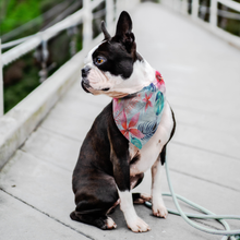 Load image into Gallery viewer, Pet Bandana - Tropical Floral - P.A.W