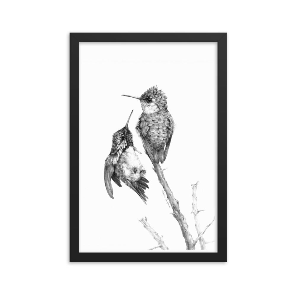 Tasha Gabeeva Secret signs. Hummingbird Framed poster