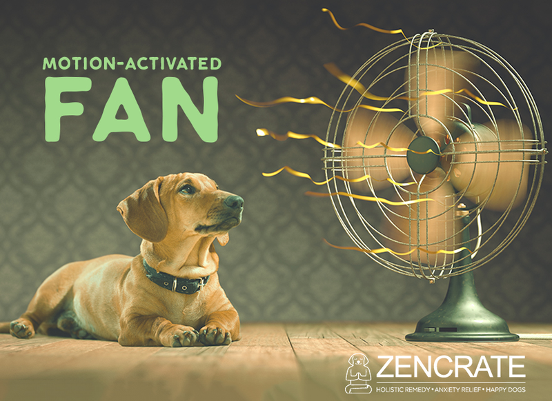 Motion Activated Fan