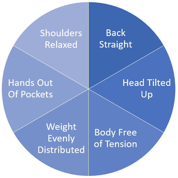 Confident Body Posture Pie Chart