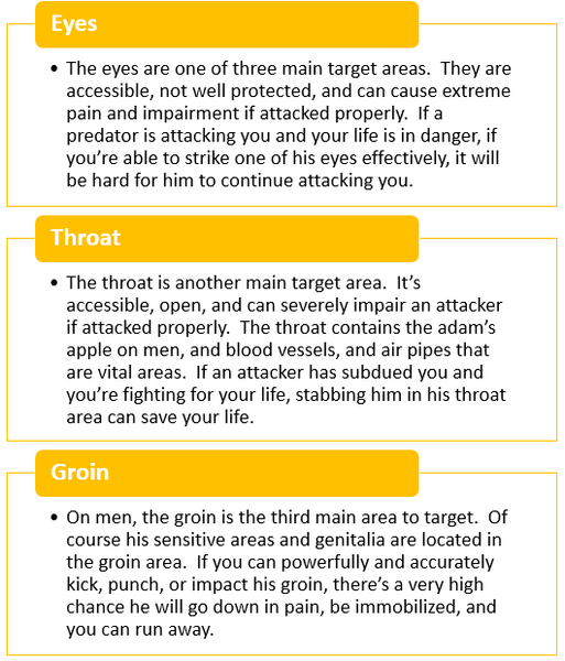 Defensive Fighting Primary Target Areas