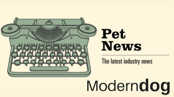 Modern Dog Magazine: Peacebone Founders Feature