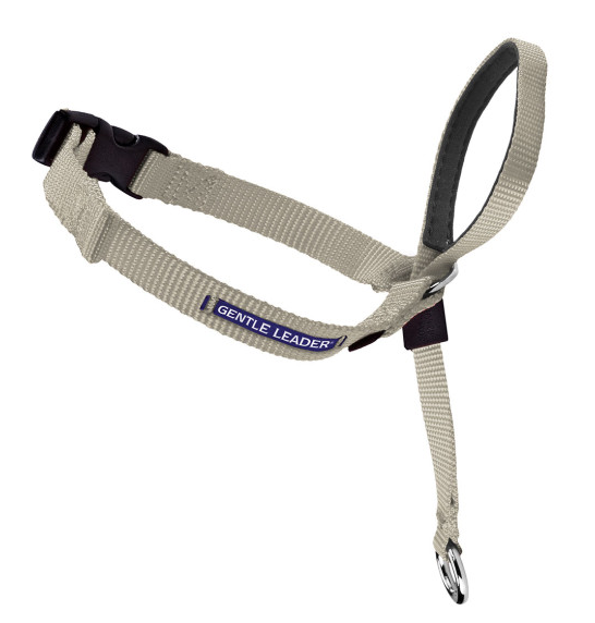 Petsafe Gentle Leader Quick Release Fawn Headcollar for Dogs - PetSafe | Peacebone