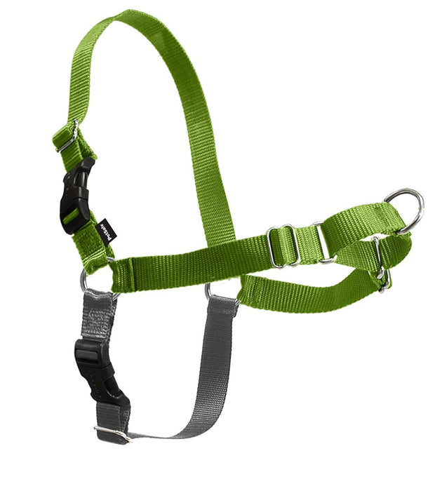 PetSafe Easy Walk Green Apple & Gray Dog Harness - PetSafe | Peacebone