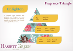 Enlighten - Fragrance Oil Diffuser 250ml