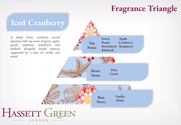 Iced Cranberry - Fragrance Oil Reed Diffuser 100ml
