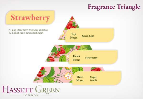 Strawberry - Fragrance Oil Reed Diffuser 100ml