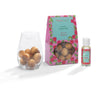 Summer Raspberry - Scented Wooden Balls With Oil & Vase