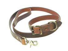 Dog Leash & Collar