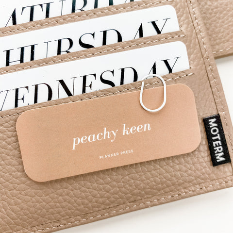 Peachy Keen Rectangle Planner Card