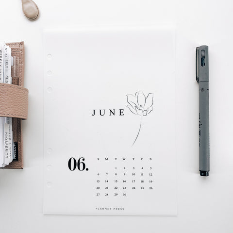 June 2021 Calendar Minimal Planner Dashboards For TN's and Travelers Notebook Ringbound Planner V481