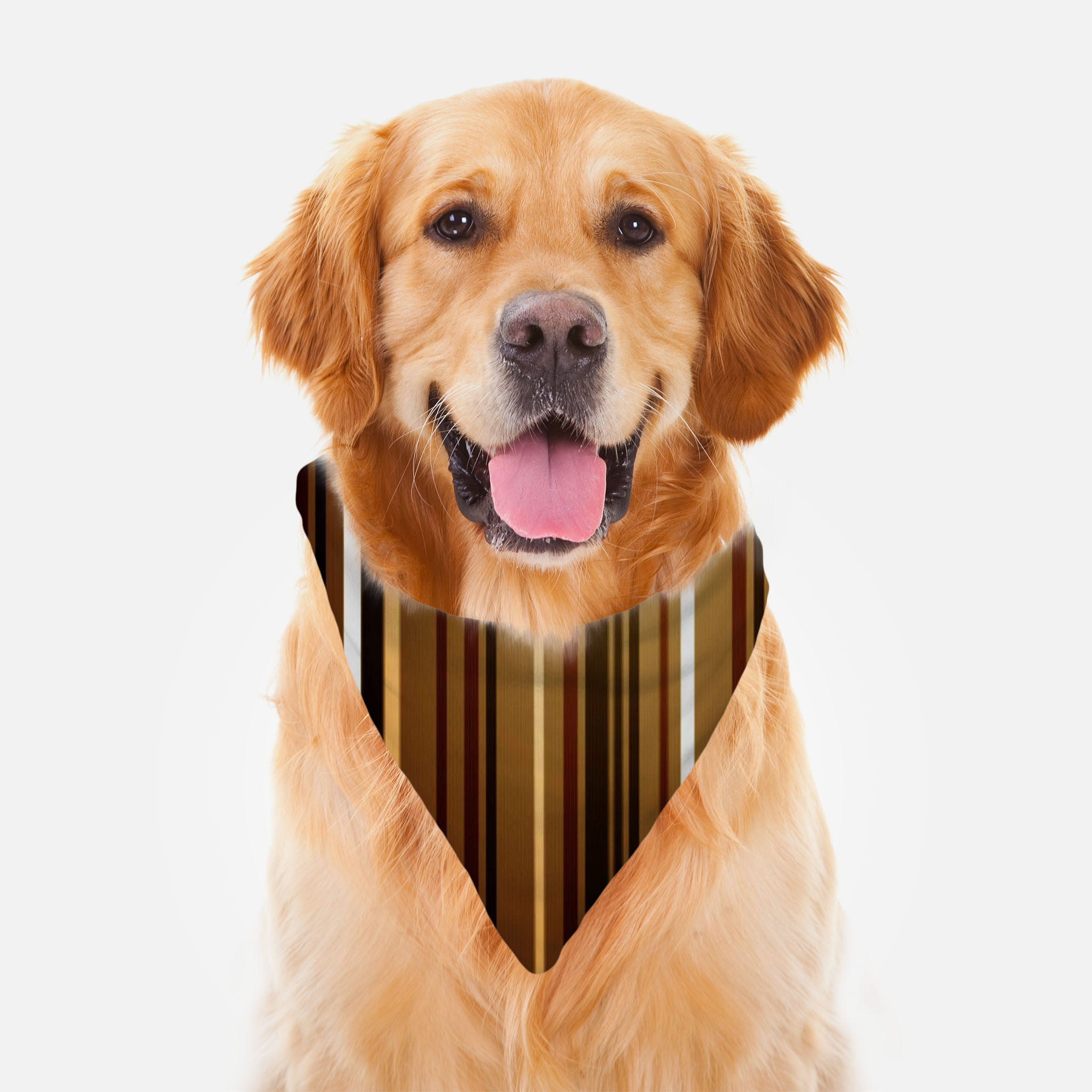 Stripe Me Brown Ruff Riders Pet Bandana by JoJo (1170013-RR-B)